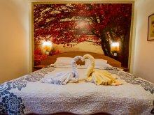 Bed & breakfast Codlea, Timar B&B