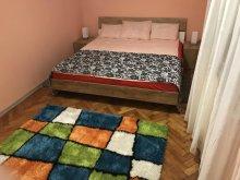 Accommodation Huzărești, Apartment Ioana