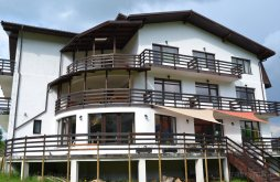 Apartman Kispredeál (Predeluț), Inspire View Vendégház