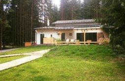 Villa Borszék Fürdő közelében, M36 Villa