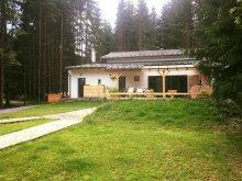 Villa Szentegyháza (Vlăhița), M36 Villa