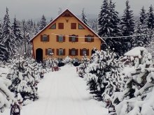 Accommodation Bucin Bogdan Ski Slope, Baricz Guesthouse