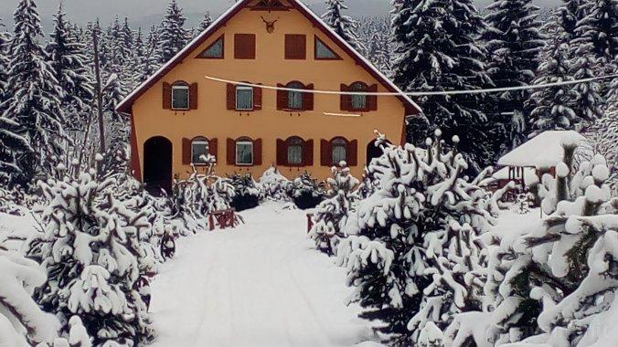 Casa de oaspeți Baricz Borzont