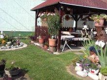 Accommodation Tiszaszentimre, Bandesz Guesthouse