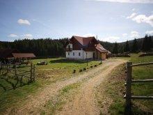 Accommodation Bălcești (Beliș), Alexandra Agrotourism Guesthouse