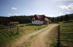 Accommodation Poiana Horea, Alexandra Agrotourism Guesthouse