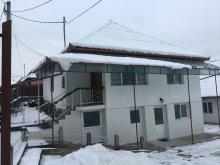 Accommodation Avrămești, Szekeres Guesthouse