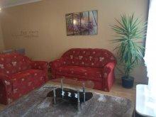 Accommodation LB27 Reggae Camp Hatvan, Lavander Apartament