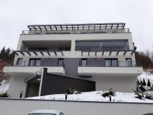 Accommodation Timișu de Sus, Lulus Apartment