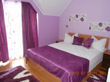Accommodation Finiș, Vura Guesthouse