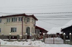 Vendégház Szilágyillésfalva (Băsești), Noémi Panzió