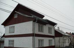 Apartment Mănăstirea Humorului, Casa Rodica B&B