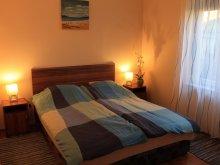 Accommodation Csokonyavisonta, Sövényes Apartment