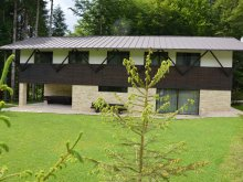 Accommodation Bughea de Jos, Haiducului Chalet
