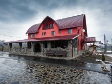 Accommodation Vadu Izei, Tavisa B&B