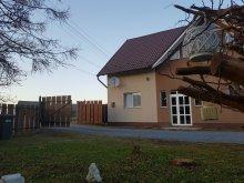 Vendégház Gyilkostó (Lacu Roșu), Elza Vendégház