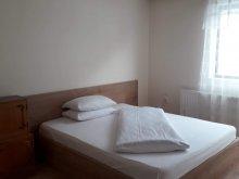 Accommodation Săldăbagiu Mic, Anisia Vacation Home