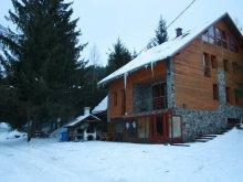 Kulcsosház Hălăucești, Tópart Kulcsosház