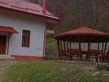 Cazare Căpruța, Casa Alin