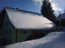 Accommodation Vlăhița, Bíró Guesthouse