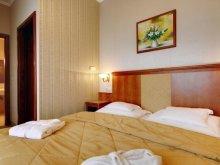 Accommodation Mezőgyán, Elizabeth Hotel