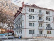 Cazare Plopu, Hotel Artemis