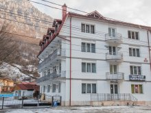 Hotel Sasca Montană, Tichet de vacanță, Hotel Artemis