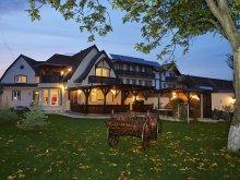 Accommodation Albeștii Pământeni, Travelminit Voucher, Ambient Mansion