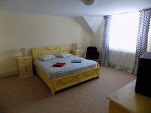 Apartament Dejuțiu, Vila Berzele