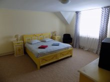 Apartman Runcu, Berzele Villa