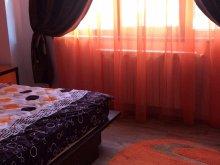 Package Mihai Bravu, Loris Apartment