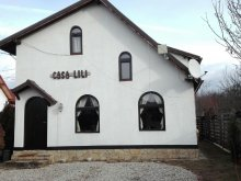 Accommodation Sălcioara (Mătăsaru), Lili's House