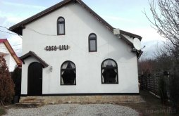 Vacation home Dâmbovița county, Lili's House