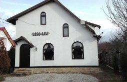 Vacation home Scheiu de Sus, Lili's House