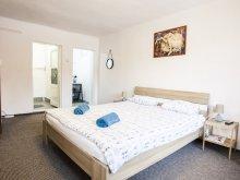 Apartment Săliște de Pomezeu, Central Cottage