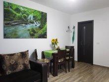 Accommodation Covăsinț, Little House Apartment