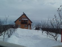 Casă de oaspeți Transilvania, Casa de oaspeți Bálint