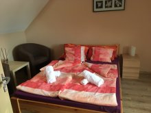 Accommodation Tiszanána, Darwin Classic Apartment