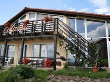 Accommodation Cârțișoara, Maria Guesthouse