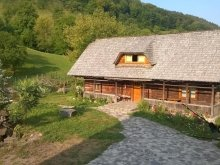 Accommodation Cavnic, Ioana Guesthouse