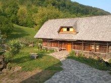Szállás Máramaros (Maramureş) megye, Ioana Panzió