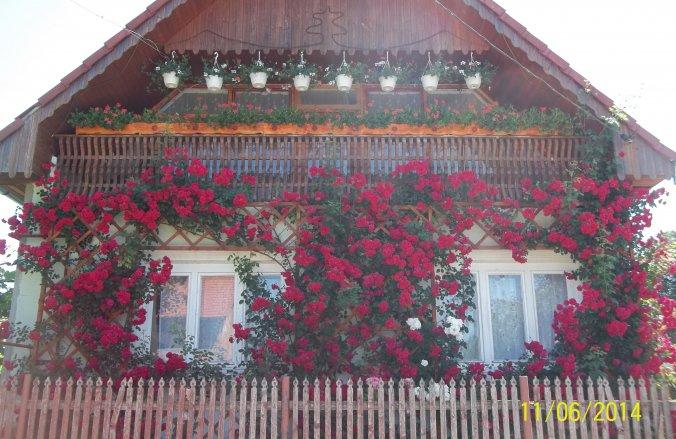 Kopó Guesthouse Chibed