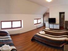 Accommodation Câmpu Cetății, Veritas Motel