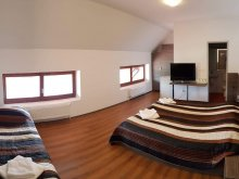 Accommodation Toplița, Veritas Motel