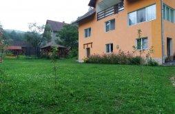 Accommodation Poiana Mărului, Anca și Nicușor Vacation Home