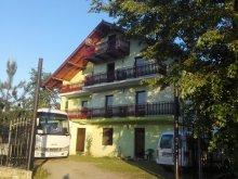 Szállás Szucsáva (Suceava) megye, Tichet de vacanță, GrandEmi Belvedere Panzió