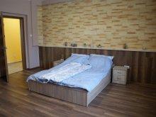 Accommodation Nagy Hideg-hegy Ski Resort, Ilona Premium Guesthouse