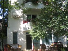 Apartment Pelinu, Elena Vila