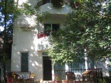 Villa Saligny, Elena Vila