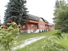 Accommodation Lacu Roșu, Csermely Guesthouse